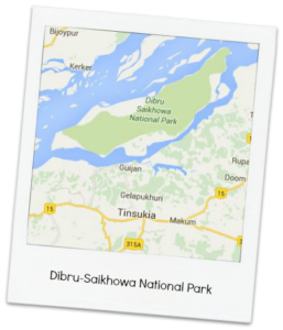 Map_DSNP