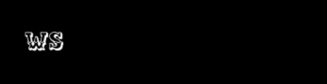 Logo Eaglenest