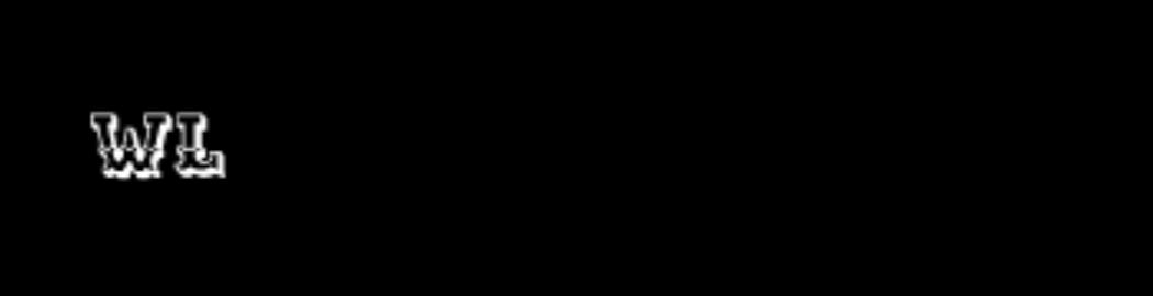 Logo Maguri