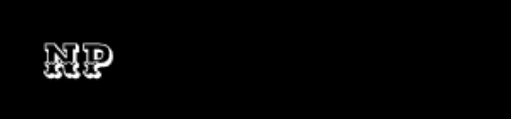 Logo nameri